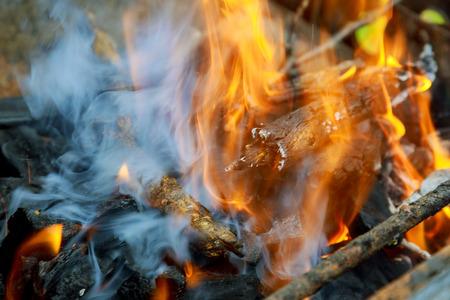 Closeup of firewood burning in fire wood Stok Fotoğraf