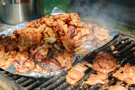 broiled: barbecue or fried chicken and pork meat BQQ
