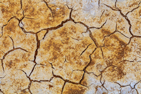 waterless: died and cracked soil Cracks on dry land