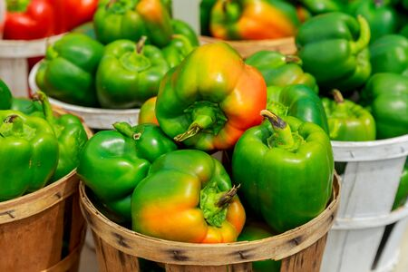Fresh yellow, orange, green and red organic bell peppers capsicum on display for sale at local farmers market departmental store. Фото со стока