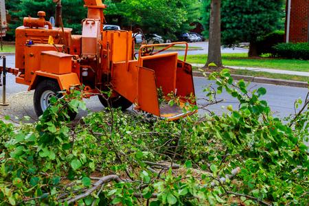 농업 기계, 나무 분쇄기 치퍼 기계 제거