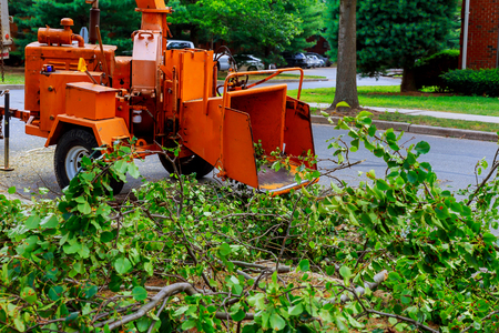 Agricultural machinery, wood shredder chipper machine to remove Zdjęcie Seryjne - 82229225