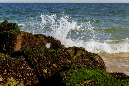 Big waves breaking on the shore with sea foam shore of the ocean wave of stones