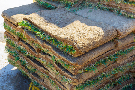 Green Grass Sod used to restore damaged grass or to create new landscaped lawn areas