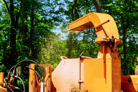 Landscapers using chipper machine to remove and wood Chipper in Action chainsaw tree branches