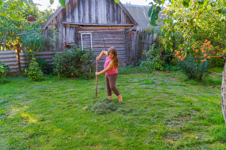 A little girl scythe for mowing and collecting grass. Braid with extra equipment.