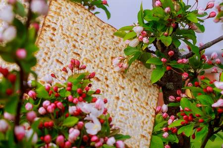 Judaism and religious on jewish matza on passover tallit prayer