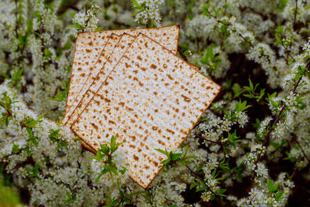 Judaism and religious on jewish matza on passover tallit prayer