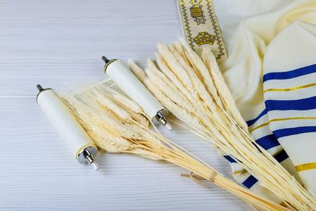 Kosher cheese cottage and milk on wheat wood background. jewish holiday shavuot food Stock Photo