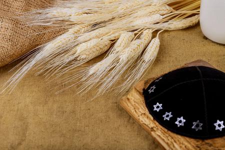 Symbols of jewish holiday Shavuot torah and shofar, wheat field background.
