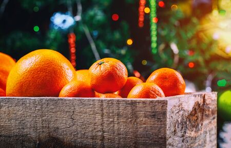 Mandarins and oranges in wooden box with christmas branch.