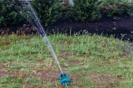 Lawn sprinkler oscillating in the garden water fly in the air backlit