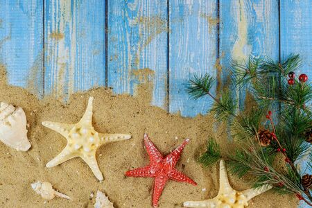 Christmas tree branch over sandy with sea shells and starfish on a blue wooden background