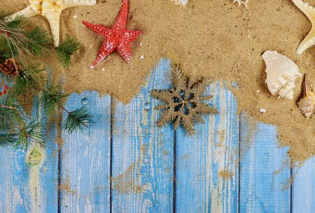 Sea shells and starfish on a branch of christmas tree with old blue wooden background