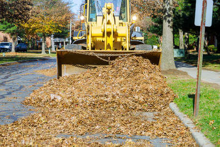 Improving the public places city team removes seasonal work on the fallen leaves with excavator Foto de archivo