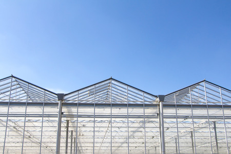 Greenhouse in front of a blue sky