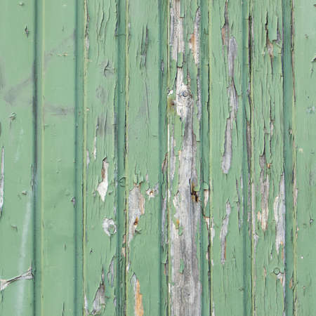 distressed wood: Green weathered paint background Stock Photo