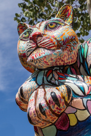 Colorful cat in the streets of Flagstaff US photo