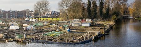 sufficiency: City gardening in Enkhuizen in the Netherlands