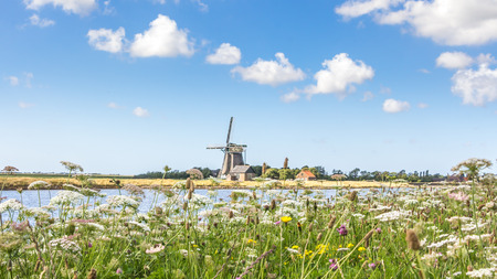 Landscape with windmill and wild flowers Archivio Fotografico