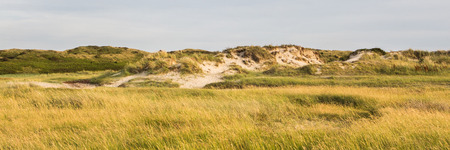 texel: The nature park on the Wadden island of Texel Slufter in the Netherlands Stock Photo