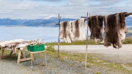peltry: Reindeer fur and antlers at a souvenir shop in Lapland