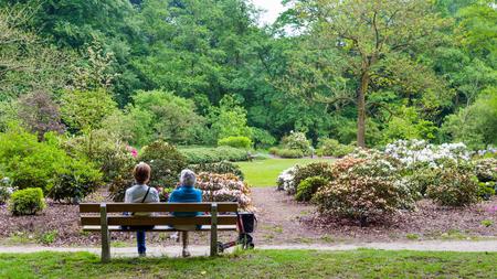 belmonte: WAGENINGEN, NETHERLANDS - APRIL 30, 2016: Two eldery woman enjoying the viewe in Arboretum Belmonte in Wageningen in the Netherlands Editorial