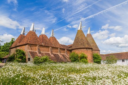 Oast house with flower field in the front in Sussex, UK 版權商用圖片