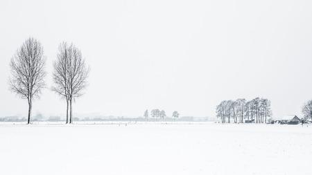Nederlands sneeuwlandschap met bomen Stockfoto