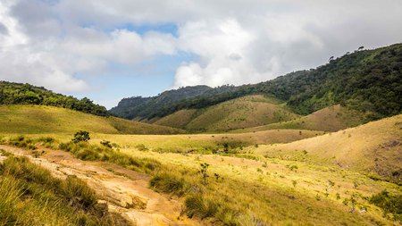 Landscape Horton Plains National Park in Sri Lanka