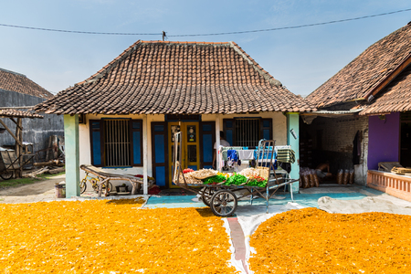 Colorful Indonesia Krupuk dyring in the sun in front of a house with a small krupuk factory Stockfoto