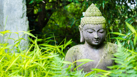 Oveergrown Buddha Statue In An Green Garden Stock Photo   105198072