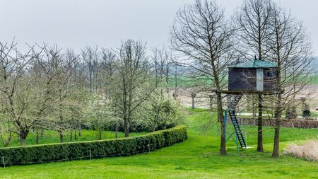 Wooden treehouse in a garden on the countryside