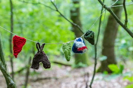 Washing line with little knitted clothes of gnomes in a forest