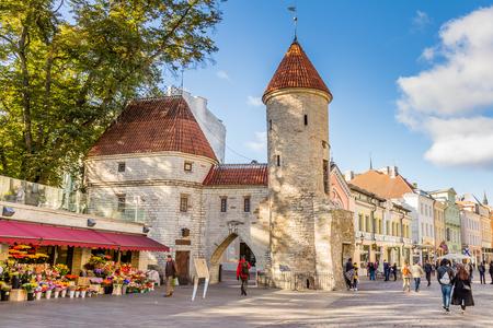 Tallinn, Estonia - September 29, 2018: Towers of Viru Gate at the entrance to the old town of Tallinn, Estonia