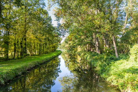 Fresh green trees reflecting in a little river in the Netherlands Stockfoto - 115482190