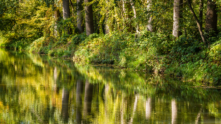 Fresh green trees reflecting in a little river in the Netherlands Stockfoto - 115482198