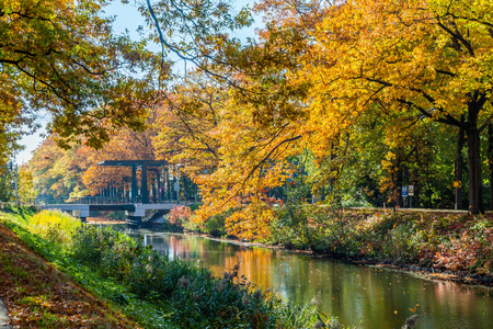 Autumn colors along the  Apeldoornse channel near Eerbeek in Gelderland, Netherlands Stockfoto - 115481820
