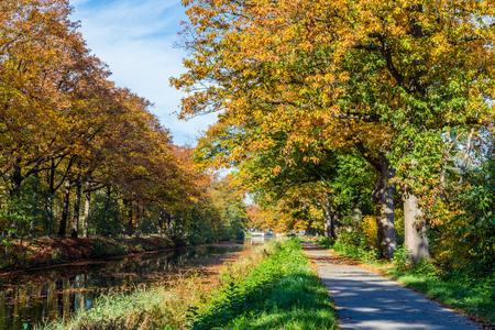 Autumn colors along the  Apeldoornse channel near Eerbeek in Gelderland, Netherlands Stockfoto - 115481821