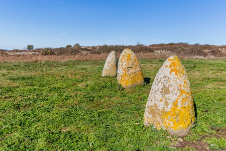 Menhir stones from the bronze age at Archeological site of Tamuli, Sardinia island, Italy