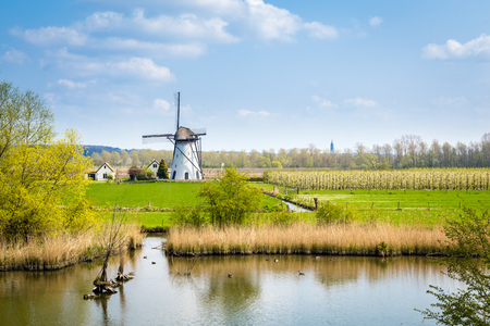 Molino de viento holandés blanco cerca de Kesteren en Gelderland en Holanda