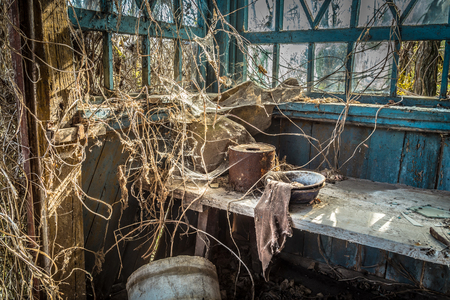 Abandoned little house in Belarus Chernobyl exclusion zone, recently opened for the public from april 2019. Stockfoto