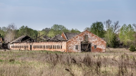 Collapsed farm stable in Belarus Chernobyl exclusion zone,