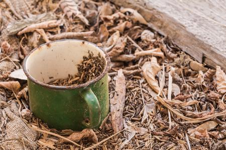 Enamelled metal vintage green mug in  Belarus, Chernobyl exclusion zone