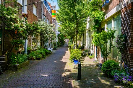Haarlem, The Netherlands - May 31, 2019: Cozy green little street with lots of pots and plants and a man on a bike in Haarlem Banque d'images - 139518446