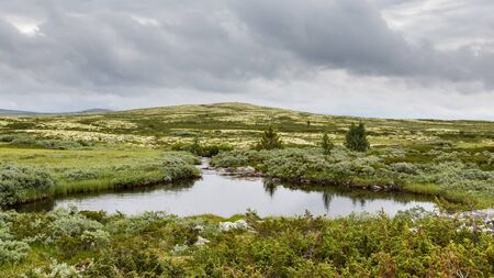 Typical landscape Rondane National Park in Oppland Norway 版權商用圖片