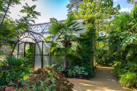 Beautiful round shaped green house from rusted steel and corrugated sheets in a garden surrounded by trees
