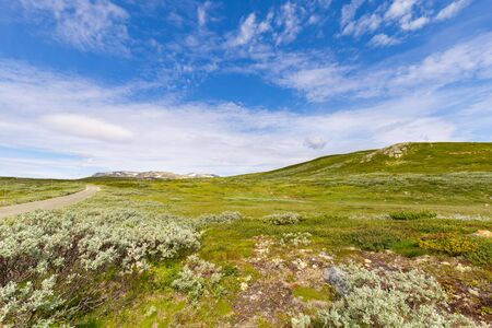 Scenic route Havsdalen Prestholt to Prestholtseter underneath Hallingskarvet near Geilo in Norway, Scandinavia