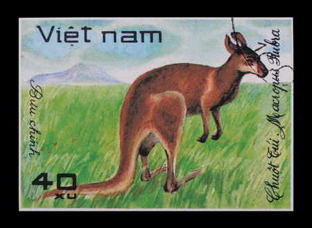 The Vietnam stamp from a series animals with the image of a kangaroo on a black . photo