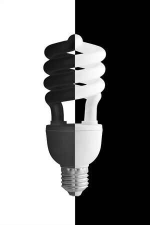 e27: Energy saving lamp in black-and-white flowers of a lamp and background.